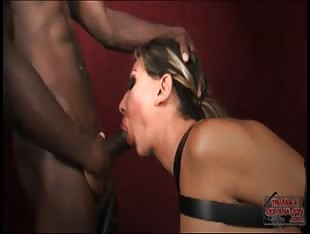 Bound tranny gagged on cock