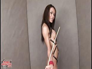 Shemale mistress modeling
