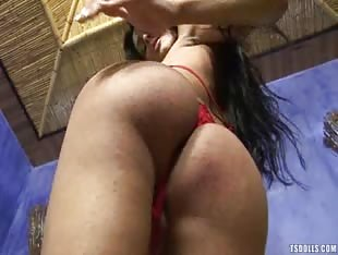 Bikini Stripper