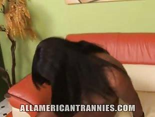 All American Tranny Tiffany