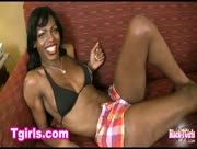 Black TGirls Vixen Coxx