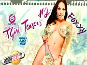 TgirlTeasers Vol2 DVD Trailer