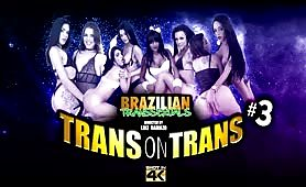 Trans on Trans #3 DVD Trailer