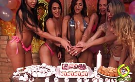 Celebrating 20 Years of Brazilian-Transsexuals