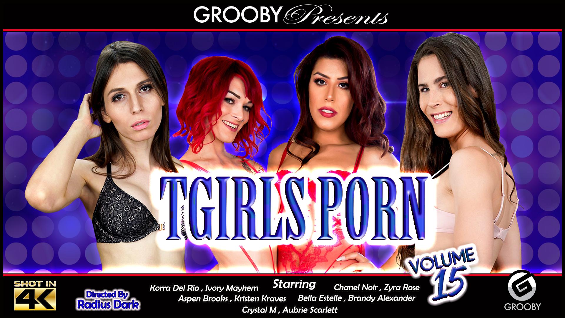 Tgirls Porn 15 DVD Trailer